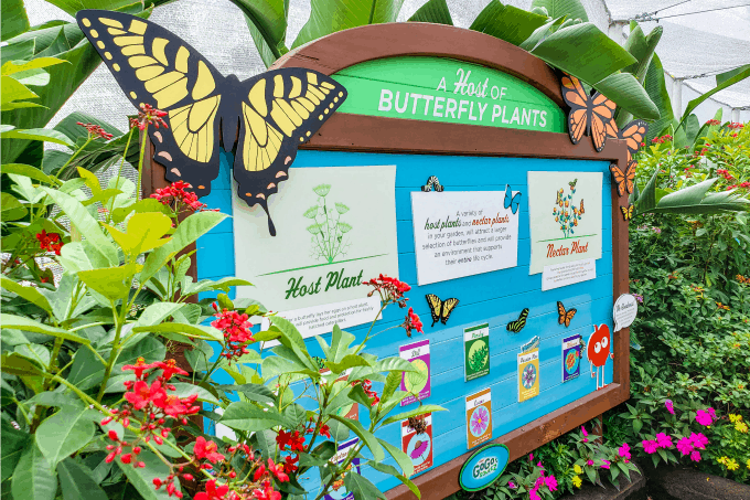 Sign in butterfly garden