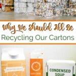 Recycling Cartons pin