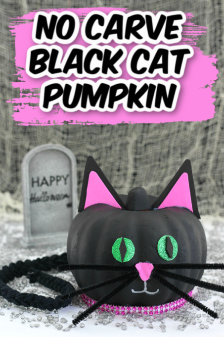 Black cat no carve pumpkin