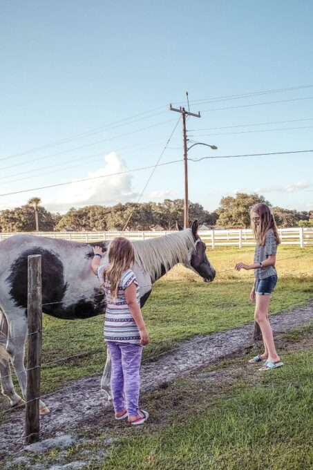 Ashling and Keira with horse