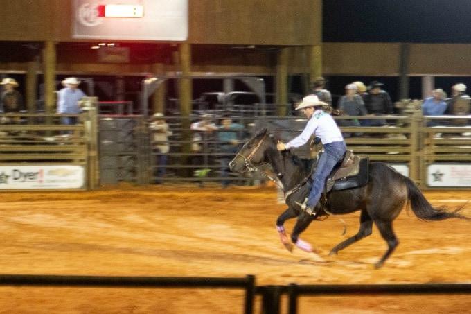 Horse and rider at rodeo