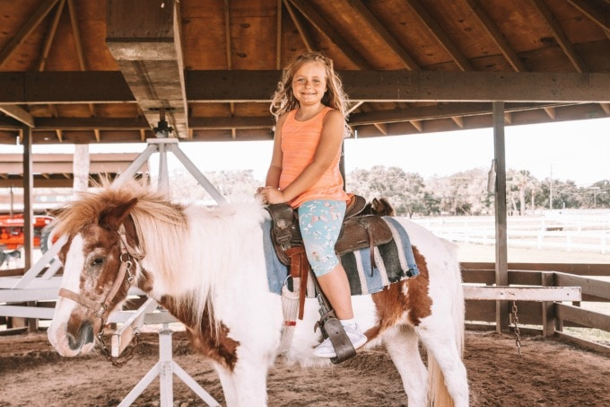 Pony rides at Westgate River Ranch