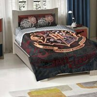 Harry Potter Hogwarts Twin Comforter with Pillow Shams