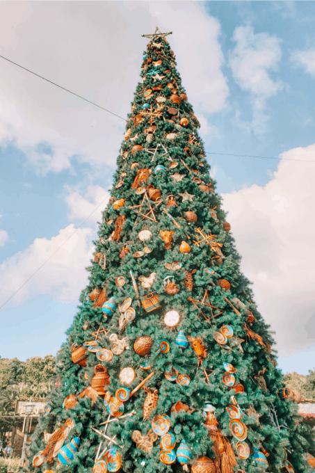 Christmas Tree at Animal Kingdom