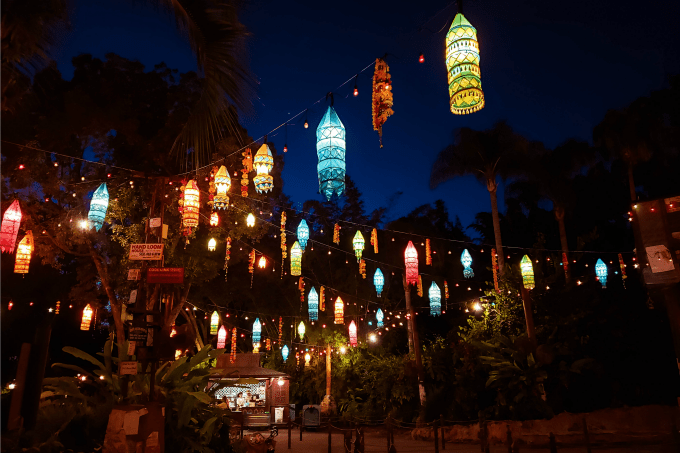 Glowing lanterns in Disney's Animal Kingdom