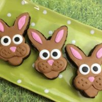 Beautiful Brownie Bunnies