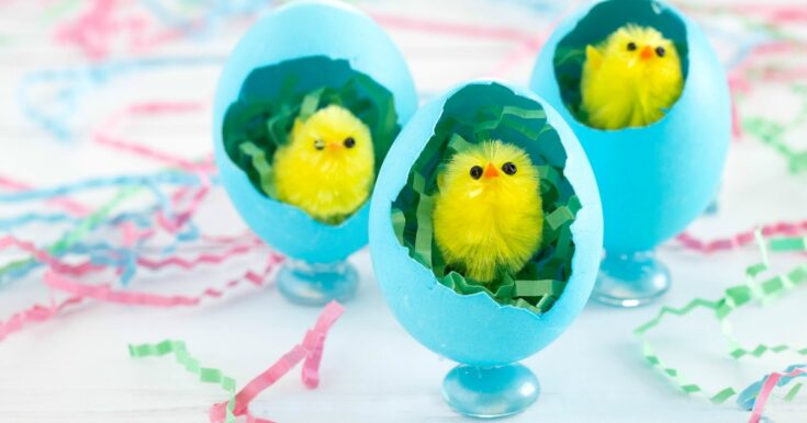 Adorable Easter Chick Craft