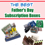 Father's Day Subscription Box Pin 3