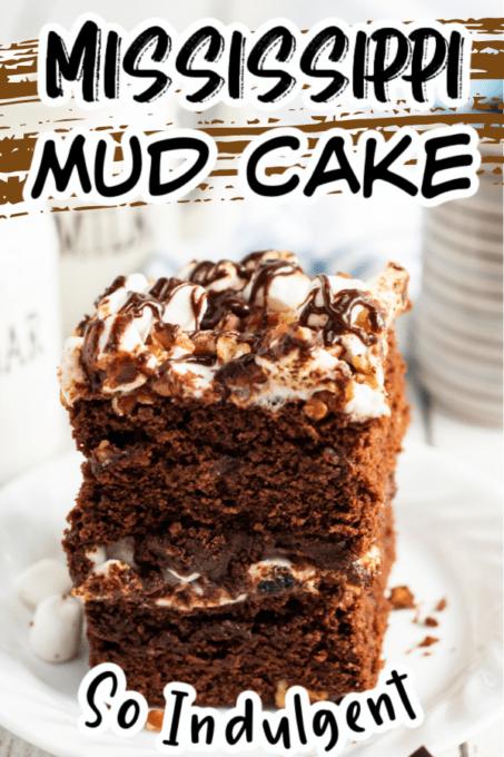 Mississippi Mud Cake Pin 1