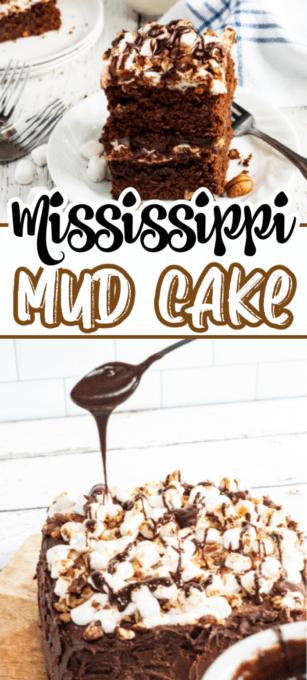 Mississippi Mud Cake Pin 3