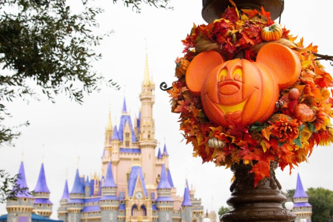 It's not fall without Mickey pumpkins