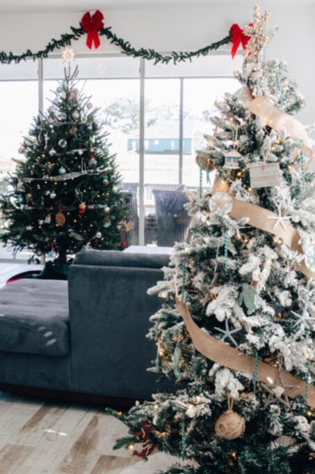 Christmas trees in living room